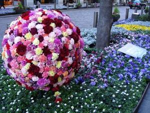 Flowerbowlmarunouchi