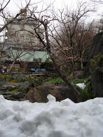 Yushimatenmanguweb1